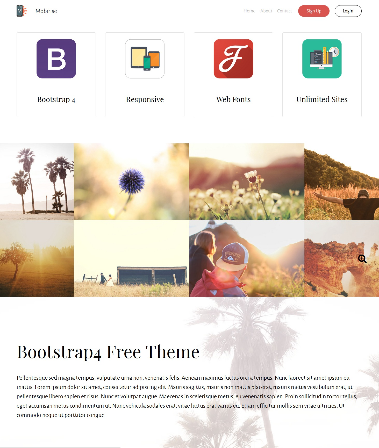 HTML5 Bootstrap Business Theme