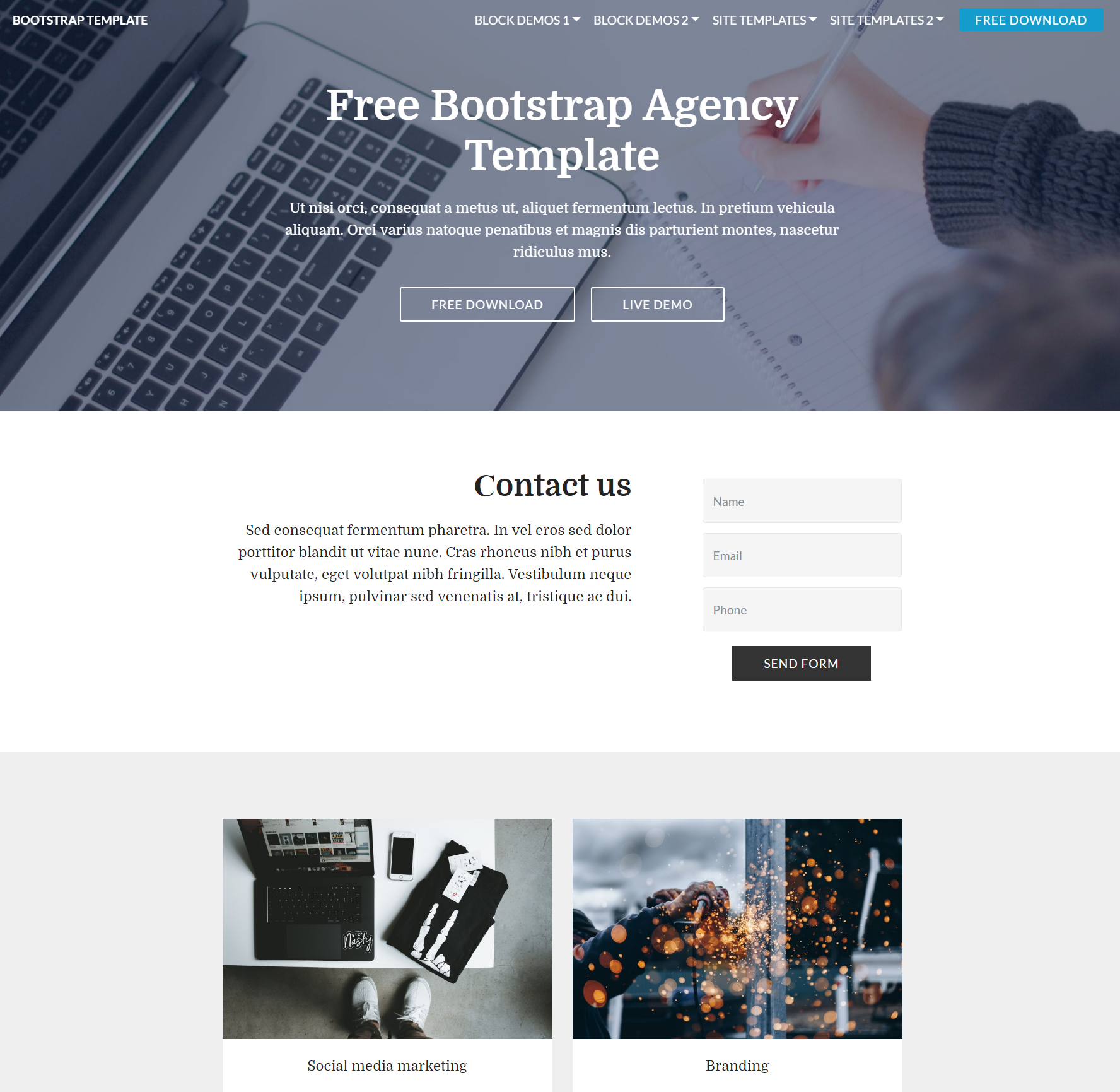 CSS3 Bootstrap  Agency Themes